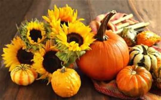 thanksgiving_img