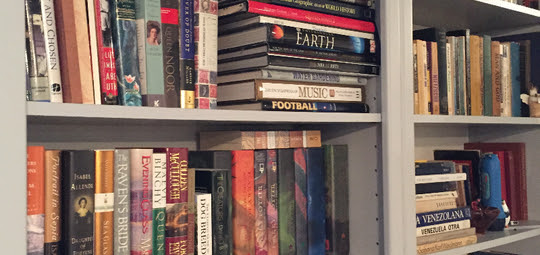 Typical Bookshelf