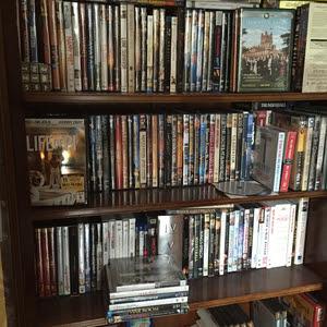 DVDs Organized on Shelves