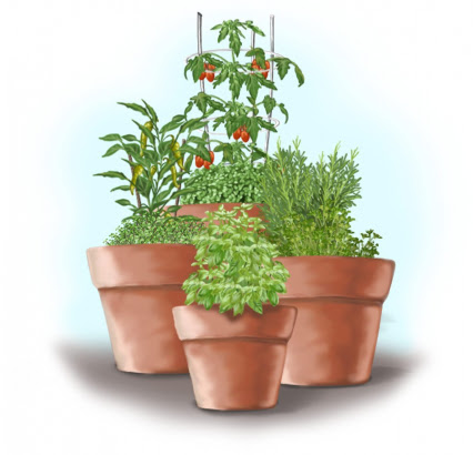Drawing of potted plants